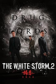 The White Storm 2: Drug Lords (2019) Hindi Dubbed